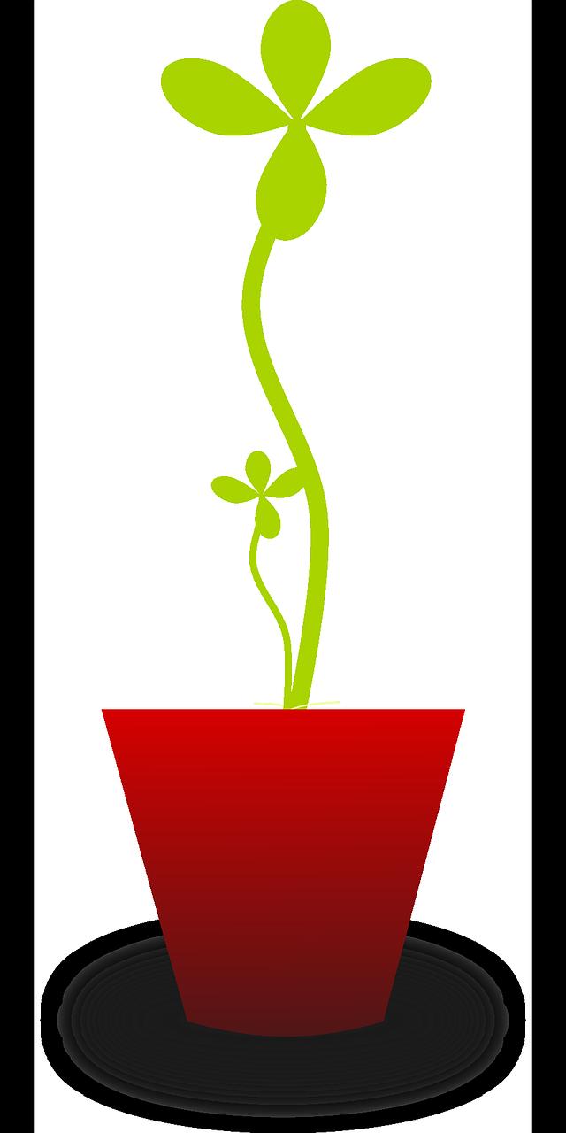 atrevete a crecer y crea tu negocio